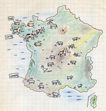 carte1