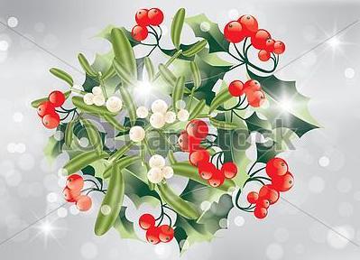 bouquet-houx-gui-noël-illustration_csp12279127